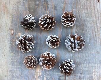 9 pine cones pine cone Christmas Christmas decoration christmas decor