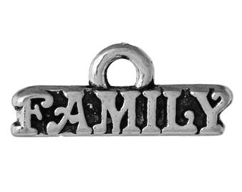 "10 Antique Silver ""Family""  Charms 16 x 7mm  (B236e)"