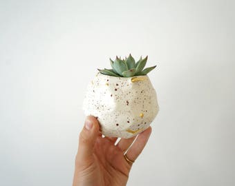 Speckled succulent planter. Gold and speckled planter. The Object Enthusiast planter. Small planter with gold. Valentine's Gift idea.