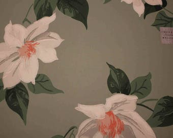 Imperial Wallpaper Sample Huge Tropical Flowers