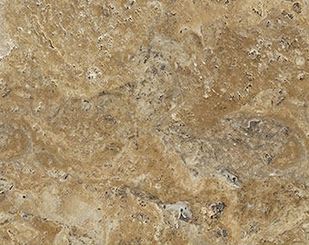 Naturescapes Tan Stone 21386-34 by Northcott Cotton Fabric Yardage