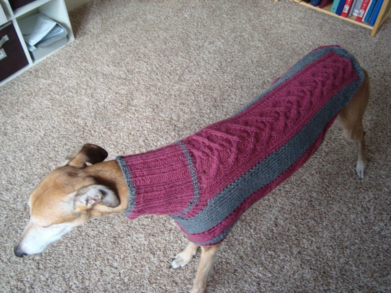 Dog Sweater Greyhound Sweater Knitting Pattern Pdf File Only From