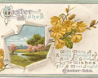 Yellow Flowers and Country Meadow with Creek Scene 1920's  Easter Greeting Vintage Postcard