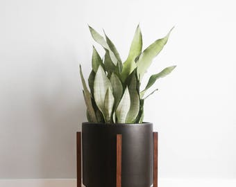 "Large - Mid-Century Modern Cylinder Planter set with solid Wood Planter Stand - 12"" Ceramic Pot"