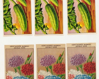 6 1920's Original French Seed Pack Labels Flowers and Vegetable