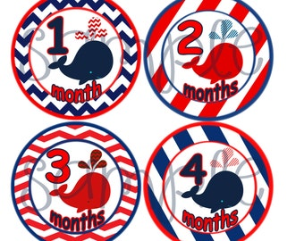 monthly baby stickers Baby boy month to month stickers Nautical belly stickers Nautical baby month stickers nautical whales monthly