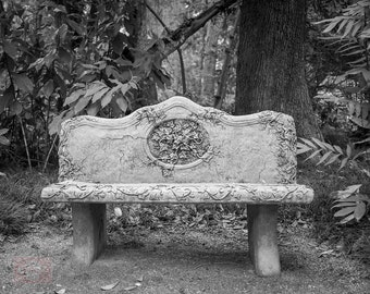 Black and White Minimalist Peaceful Garden Bench - Fine Art Photograph Print Picture