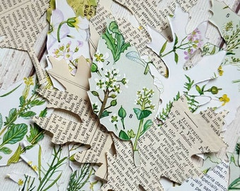 Leaf Die Cuts , Leaf Embellishments , Paper Leaves , Leaf Shape , Green Leaves , Die Cut Leaf , Decorative Leaf , Card Topper