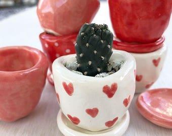 Tiny succulent planter pots, HEART baby succulent/cactus pot flower pot with saucer
