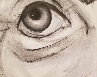 Eye Study (Old)
