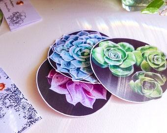 Sticker Set, Vinyl Laptop Stickers, Succulent Stickers, Painting Stickers, Original artwork Stickers, Vinyl Sticker Set, Vinyl Stickers