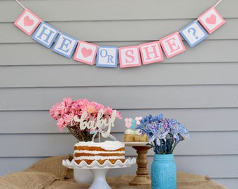 He or She Banner, Gender Reveal Party Banner, Boy or Girl Banner, What Will Baby Be Banner?