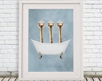 Baignoire autruche impression, imprimer, drôle autruches illustration, Illustration d'autruche, Coco de Paris, 3 autruches dans la baignoire