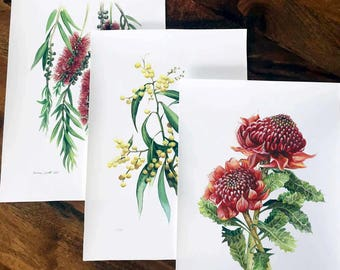 Australian Native Flora (Set of 3) - Limited edition prints (100 only)