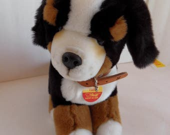 Steiff dog Bernese Puppy all Ids made in Germany 1791