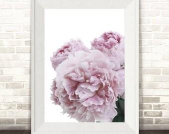 Peony Print, Peonies Print, Peony Flower Print, Floral Print, Peony Art, Floral Photography, Peonies Art Print