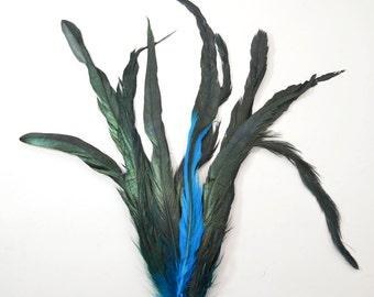 "Rooster Tail Satinette XXXLong - Malibu Teal, 14-16"" tall (20pcs)"