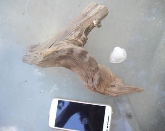 A Natural  driftwood holes/ home Projects/ Beach Decor/River Decor/ Natural color/ home Decor/