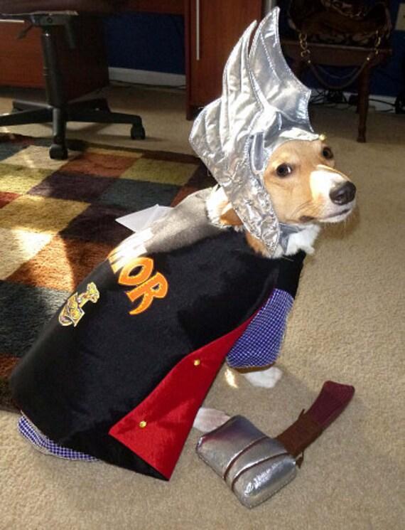 f1e61aeb6ac Avenger Dog Costumes & ?zoom
