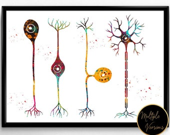 Four types of neurons,Watercolor, Brain Connections, Poster Neural Network Science,Nerve Cells and Neurotransmitter,Neuroscience Art(1179)