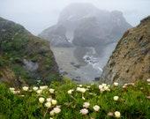 Bodega Bay Photograph Cal...