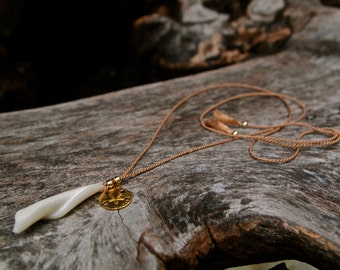 Columella Sea Shell necklace with sand dollar