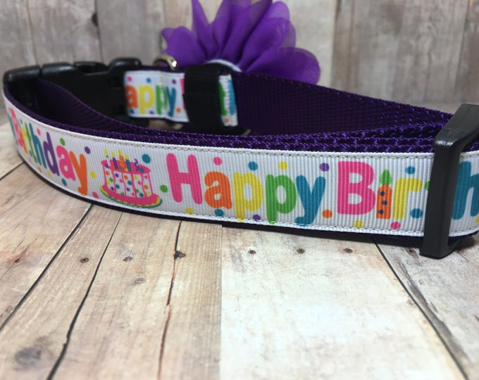 "The Birthday Pup  | Designer 1"" Width Dog Collar 