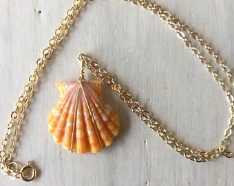 """Sunrise Shell Wire Wrapped Pendant Necklace, 1"""" Hawaiian Shell 14k Gold Filled"""