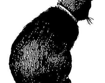 Black cat - temporary tattoo