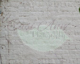 White Brick Vines Digital Photography Backdrop Background