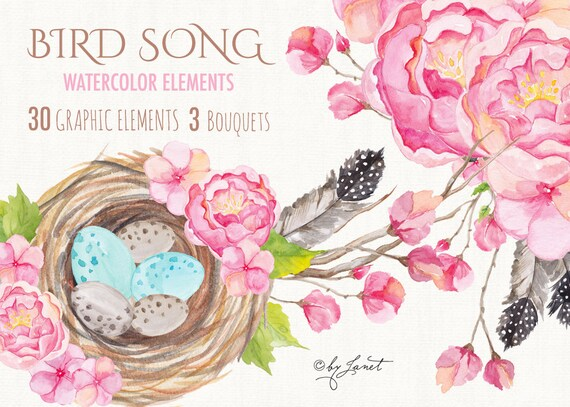 https://www.etsy.com/listing/248213767/bird-song-collection-floral-watercolor?ref=shop_home_active_10