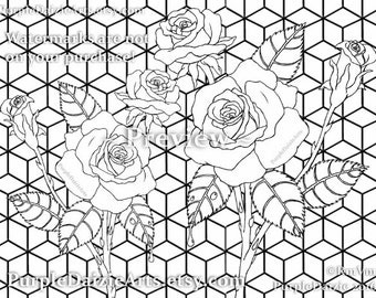 Roses Adult Coloring Page Printable Colour Digital Color Sheet Rose Buds Bud Cluster Flowers Line Drawing JPEG File Art Instant Download