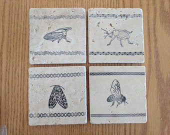 Mixed Arthropod Coasters