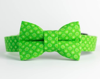 Saint Patrick's Day Spring Dog Collar with Bowtie - Lime Punch