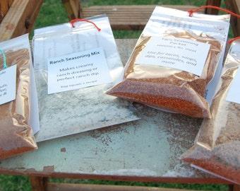 Set of 4 Spice Packets-Apple/Pumpkin Pie Spice, Ranch Dip/Dressing, Taco Seasoning, Chili Seasoning