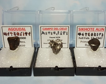 3 METEORITE Types With Natural Meteorite Writing Labels And Souvenir Cards Agoudal Campo Del Cielo And Sikhote Alin Outer Space Rock Set