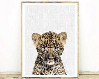 Leopard Cub Wall Art Print, Nursery Baby Animal,  Safari Animal, Nursery Leopard, Kids Room Poster, Digital Download, Large Poster, #114