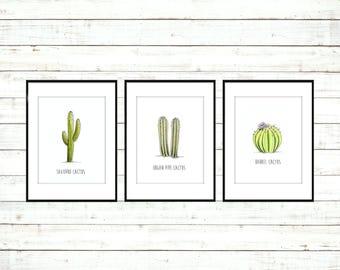 Cactus Print Set. Cactus Print. Cactus Decor. Cactus Art. Cactus Print Set of 3. Cactus Illustration. Cactus Wall Art. Cactus Artwork