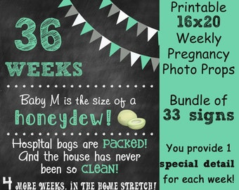 Weekly Pregnancy Countdown Chalkboard Photo Prop Sign - Set of 33