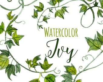 Watercolor Green Ivy Clipart, Ivy Tendrils Illustration, Fancy clip art, Greenery Clipart