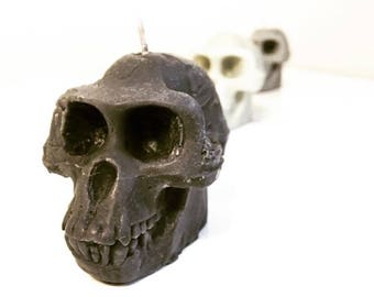 Ardipithecus Skull Candle