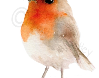 Robin Bird, Art Print #86