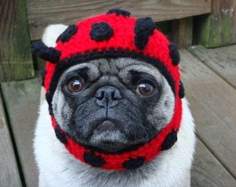 Dog Hat - Ladybug / READY TO SHIP