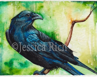 "Crow Raven Watercolor Print  ""Caw"""
