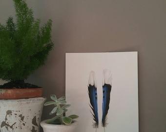 Original Blue Jay Feather Art, watercolor painting, modern decor, home decor, boho decor, natural decor, feather sketch