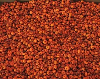 4 Cups Orange Putka Pods, unscented, Potpourri, mini pumpkins, bowl filler, dried botanical, fall decor, Orange Pumpkin Pods