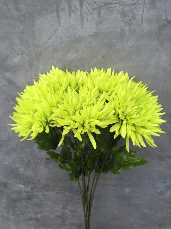 Lime green spider mums spider mums mums wedding flowers home lime green spider mums spider mums mums wedding flowers home decor silk flowers lime green flowers 25 tall from flowerfantasee on etsy studio mightylinksfo