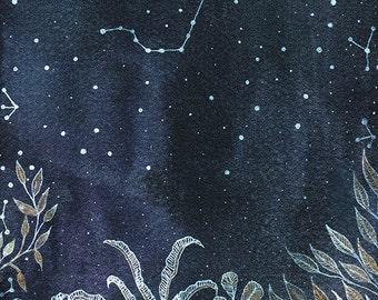 Scorpio Constellation // Fine Art Print // Midnight Jungle & scorpio constellation