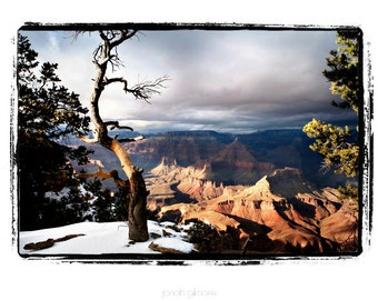 Grand Canyon in December Stormy Sky, Snow, Tree Fine Art Greeting Card 5 x 7 by Jonah Gilmore