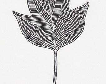 "Block print: Tulip Tree leaf - limited edition hand pulled fine art block print, linocut print (5 x 7"")"